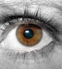בדיקת עיניים סדירה